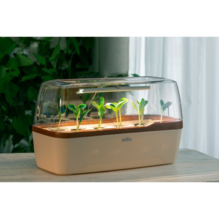 Romberg BoQube greenhouse & planter box system in size L with lighting